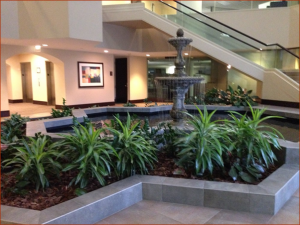 Bldg Lobby Planter_small